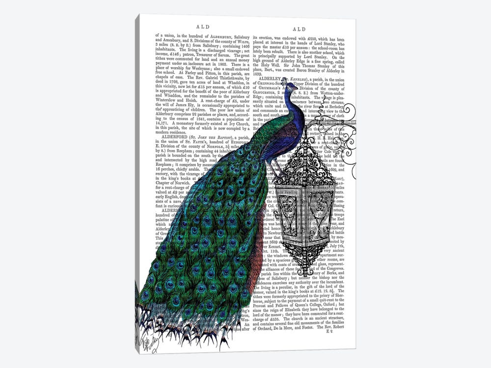 Peacock On Lamp by Fab Funky 1-piece Canvas Art Print