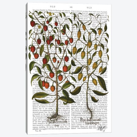 Peppers I Canvas Print #FNK1215} by Fab Funky Art Print