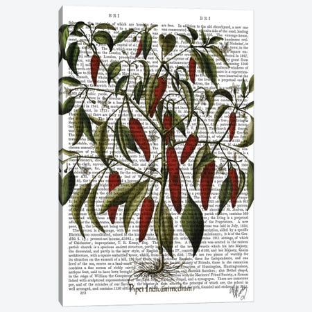 Peppers III Canvas Print #FNK1217} by Fab Funky Art Print