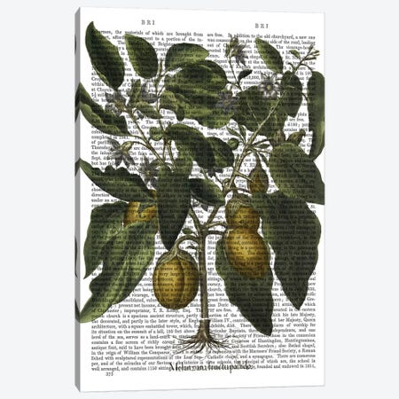 Peppers VI Canvas Print #FNK1220} by Fab Funky Canvas Art Print