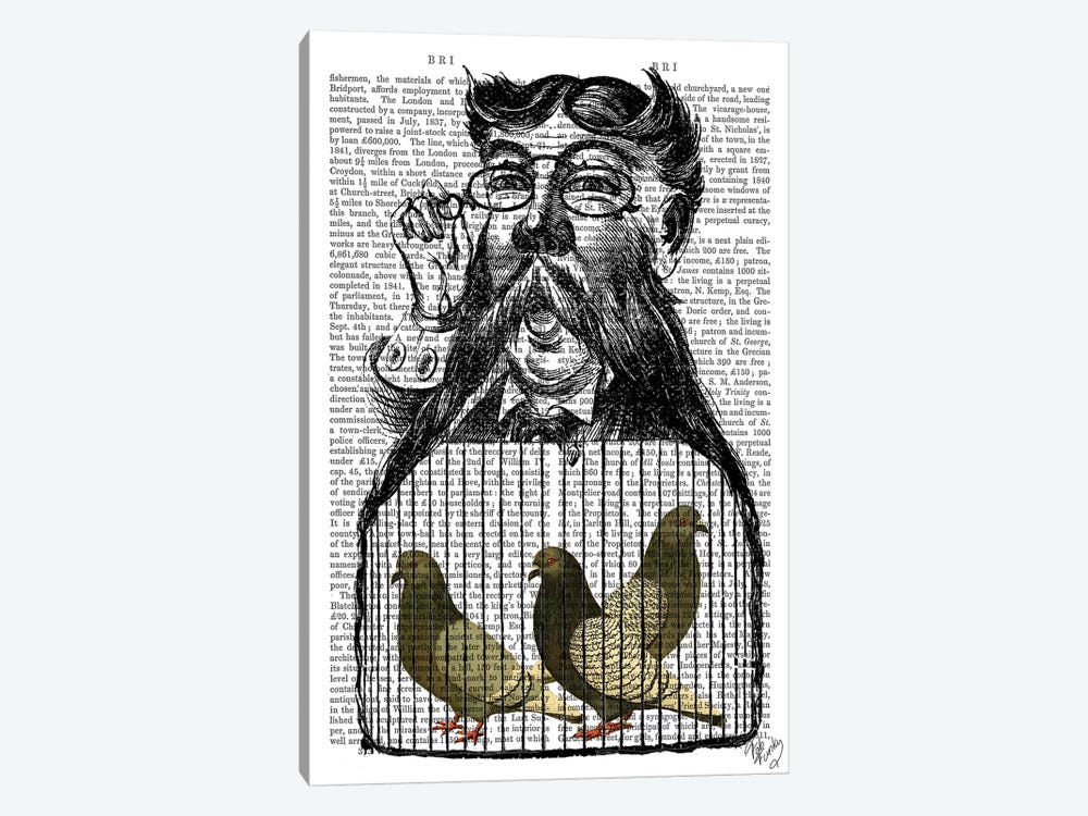 Pigeon Fancier by Fab Funky 1-piece Canvas Art Print