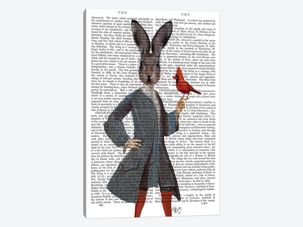 Rabbit & Bird, Print BG by Fab Funky 1-piece Canvas Art Print
