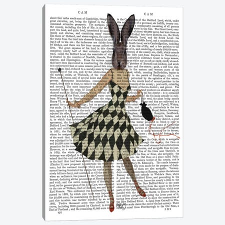 Rabbit In Black & White Checkered Dress Canvas Print #FNK1241} by Fab Funky Art Print