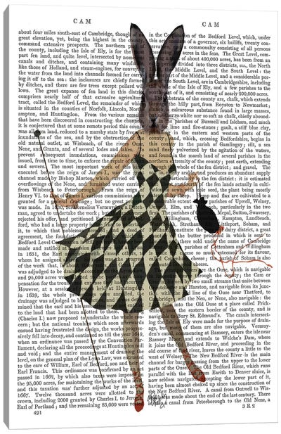 Rabbit In Black & White Checkered Dress Canvas Art Print