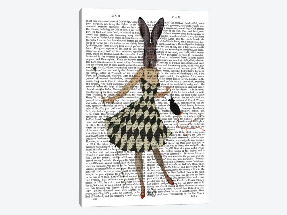 Rabbit In Black & White Checkered Dress by Fab Funky 1-piece Canvas Print