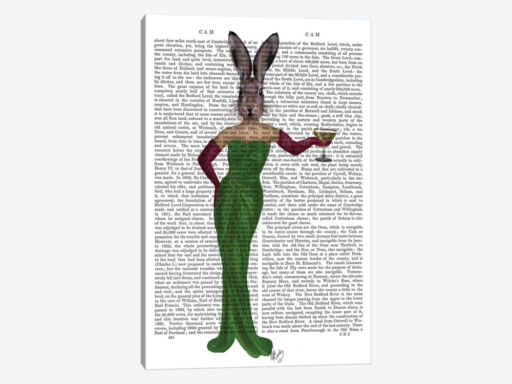 Rabbit In Green Dress by Fab Funky 1-piece Canvas Wall Art