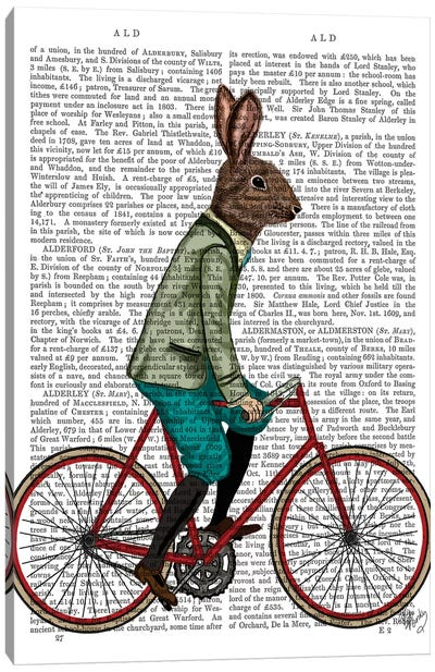 Rabbit On Bike, Print BG Canvas Art Print