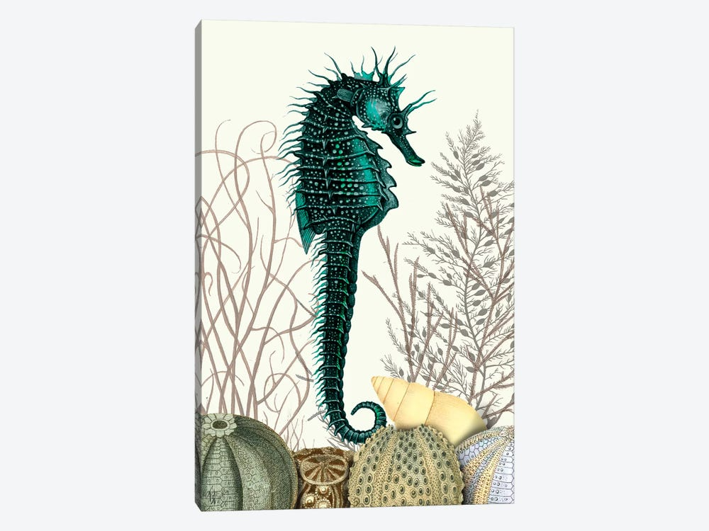 Seahorse & Sea Urchins by Fab Funky 1-piece Canvas Art Print
