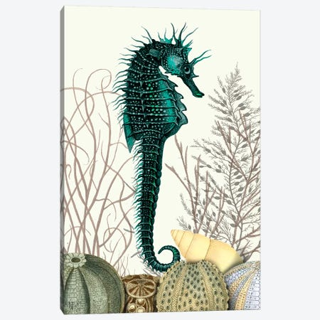 Seahorse & Sea Urchins Canvas Print #FNK1261} by Fab Funky Canvas Print