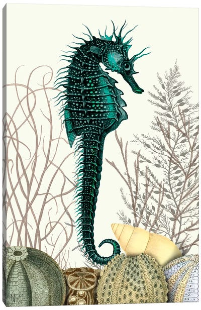 Seahorse & Sea Urchins Canvas Art Print