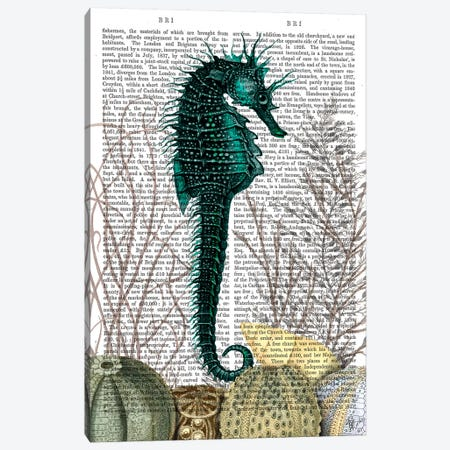 Seahorse & Sea Urchins, Print BG Canvas Print #FNK1262} by Fab Funky Canvas Print