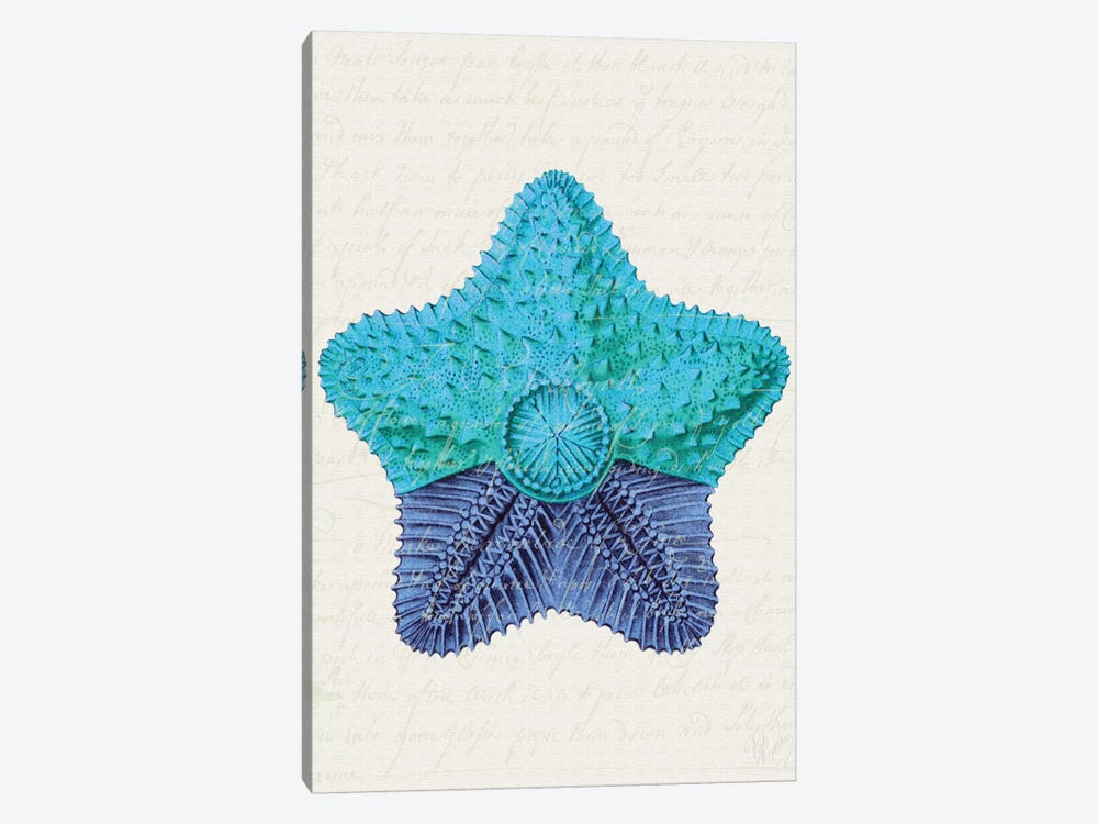 Starfish In Shades Of Blue II by Fab Funky 1-piece Canvas Art