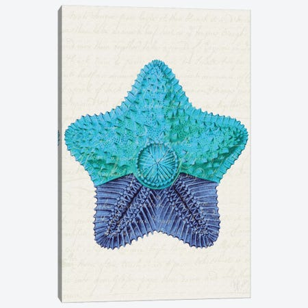 Starfish In Shades Of Blue II Canvas Print #FNK1277} by Fab Funky Art Print
