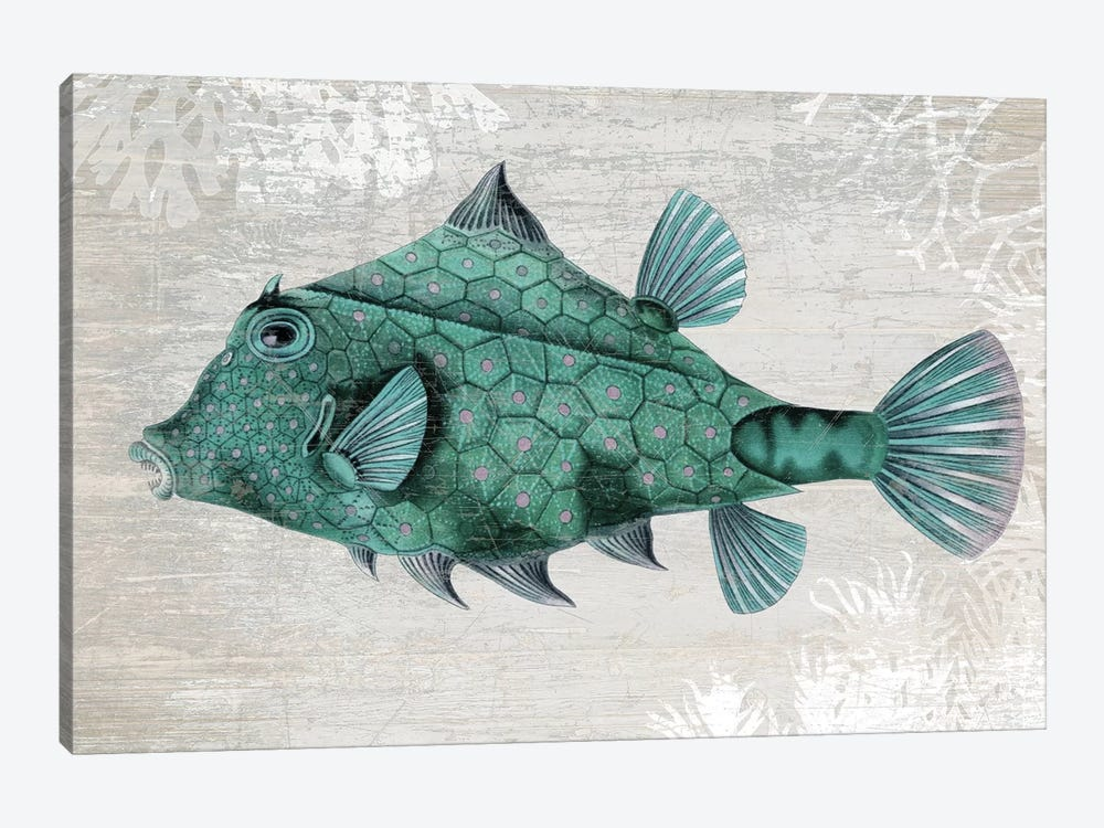 Turquoise Turret Fish by Fab Funky 1-piece Canvas Artwork