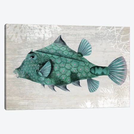 Turquoise Turret Fish Canvas Print #FNK1305} by Fab Funky Canvas Print