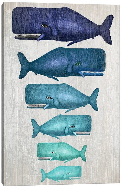Whale Family Blue On White Canvas Art Print