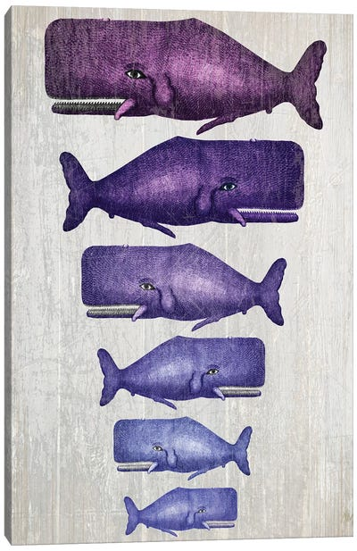 Whale Family Purple On White Canvas Art Print