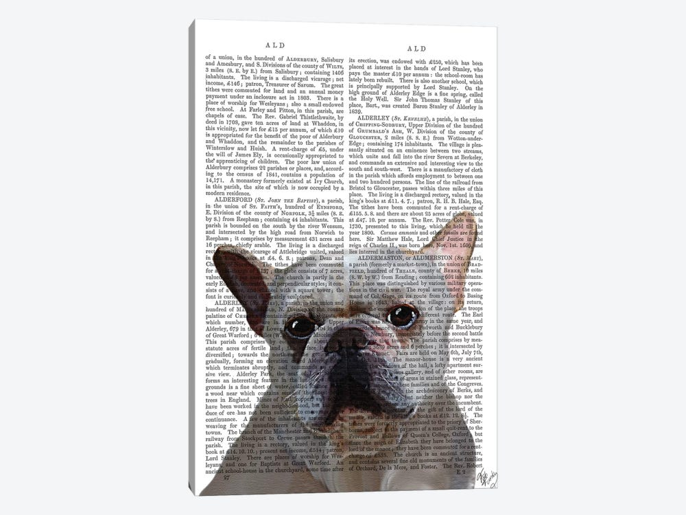 White French Bulldog by Fab Funky 1-piece Art Print