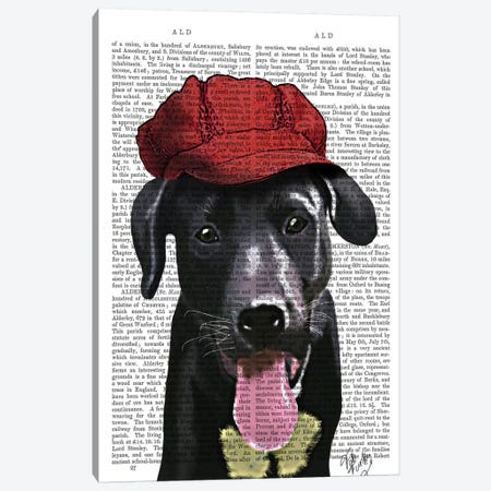 Black Labrador With Red Cap Canvas Print #FNK1328} by Fab Funky Canvas Artwork