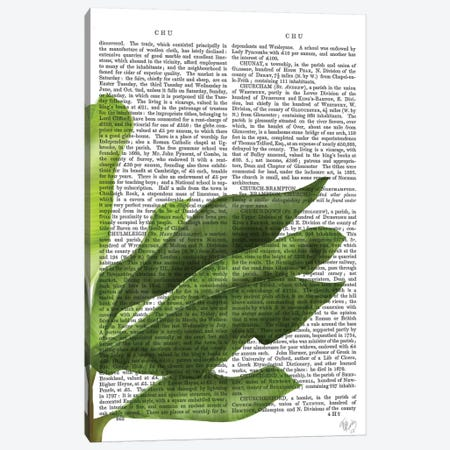 Banana Leaves II Canvas Print #FNK132} by Fab Funky Canvas Art