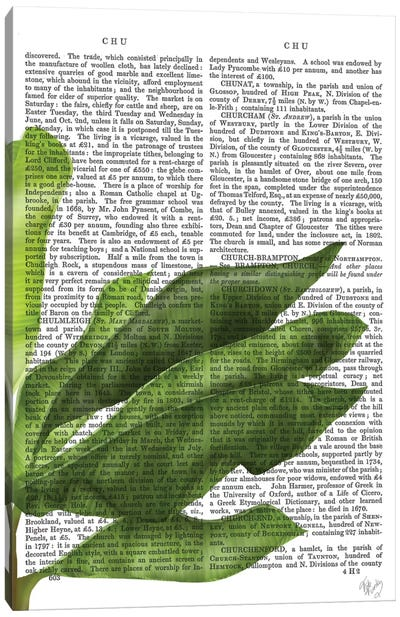 Banana Leaves II Canvas Art Print