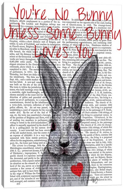 You're No Bunny Canvas Art Print