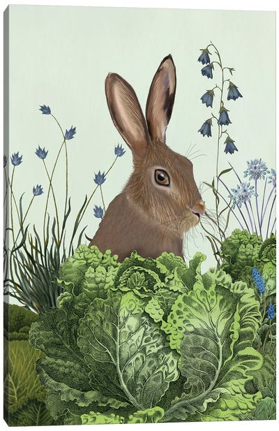 Cabbage Patch Rabbit II Canvas Art Print