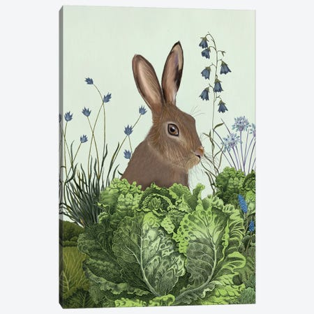 Cabbage Patch Rabbit II Canvas Print #FNK1346} by Fab Funky Art Print