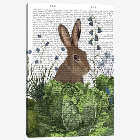 Cabbage Patch Rabbit II, With Text Canvas Print #FNK1347} by Fab Funky Art Print