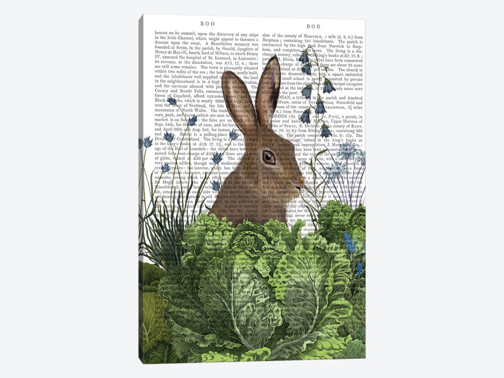 Cabbage Patch Rabbit II, With Text by Fab Funky 1-piece Canvas Wall Art