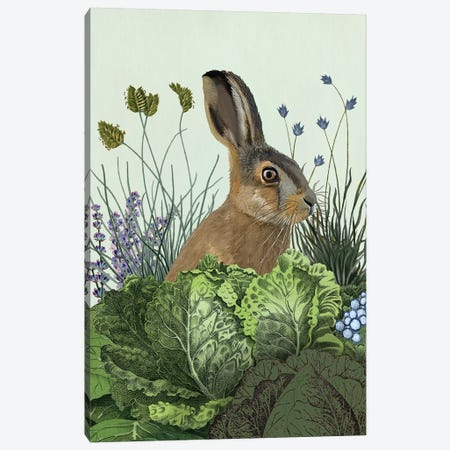 Cabbage Patch Rabbit III Canvas Print #FNK1348} by Fab Funky Canvas Art