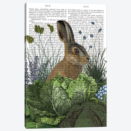 Cabbage Patch Rabbit III, With Text Canvas Print #FNK1349} by Fab Funky Canvas Artwork