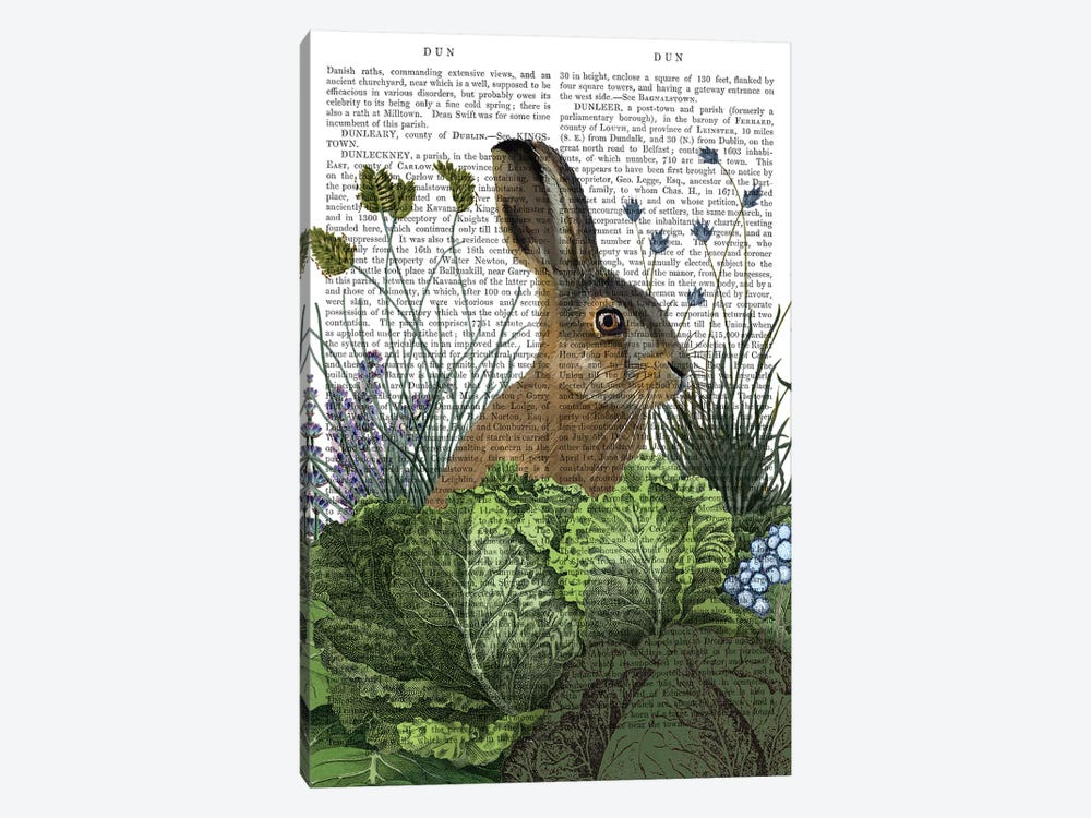 Cabbage Patch Rabbit III, With Text by Fab Funky 1-piece Canvas Wall Art