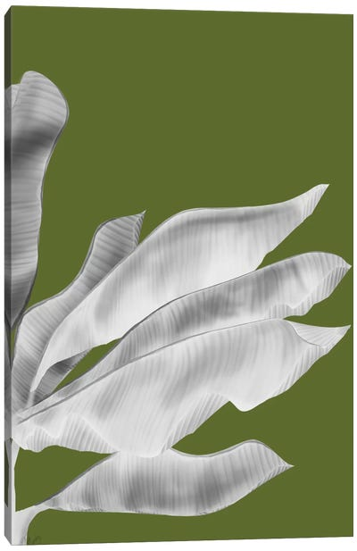 Banana Leaves V Canvas Art Print
