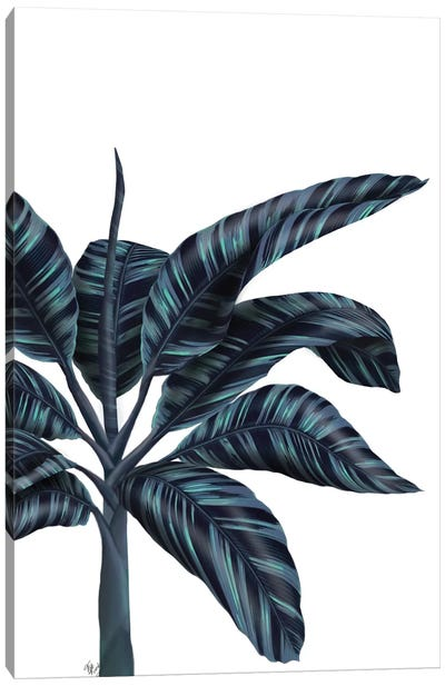 Banana Tree IV Canvas Art Print