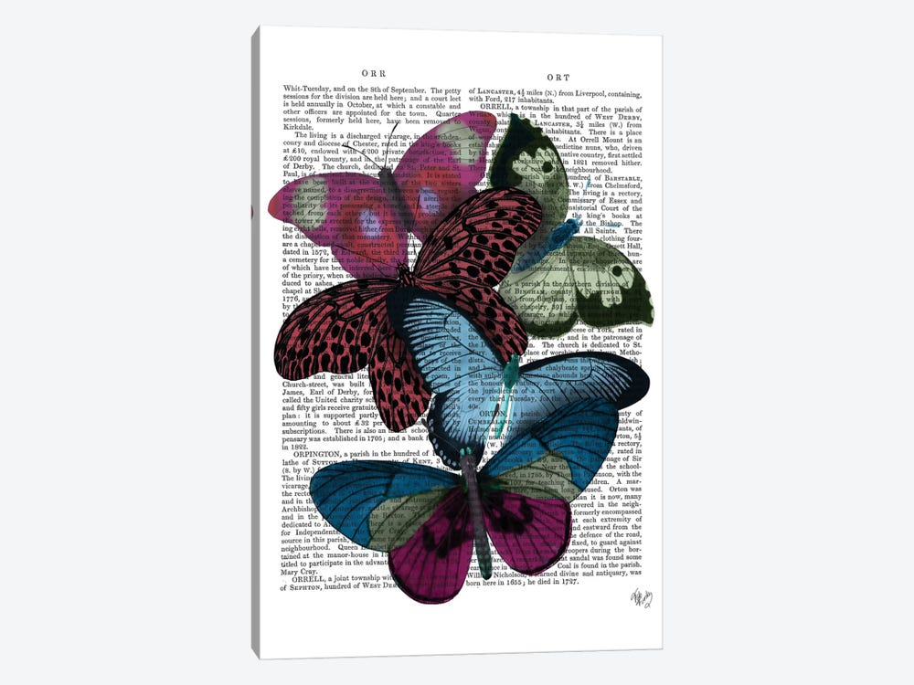 Big Bold Butterflies I by Fab Funky 1-piece Canvas Print
