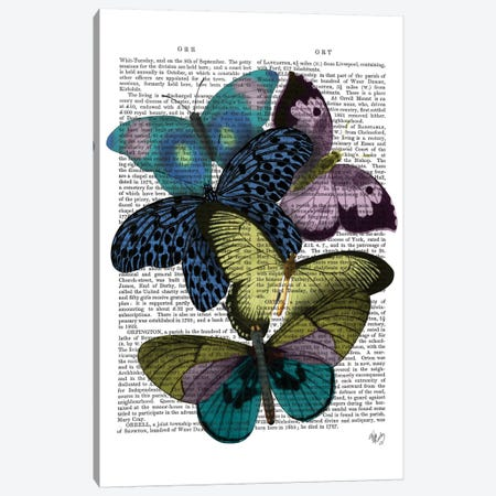 Big Bold Butterflies II Canvas Print #FNK143} by Fab Funky Art Print