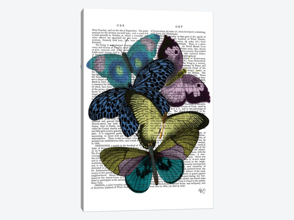 Big Bold Butterflies II by Fab Funky 1-piece Canvas Wall Art