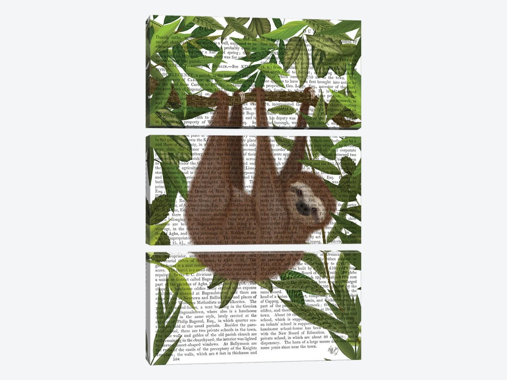 Sloth Hanging Around II by Fab Funky 3-piece Canvas Art Print