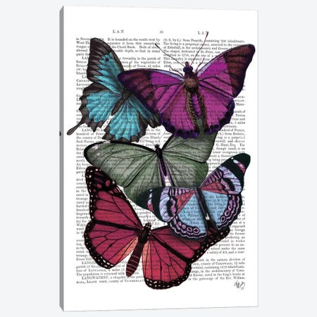 Big Bold Butterflies III Canvas Print #FNK144} by Fab Funky Canvas Artwork
