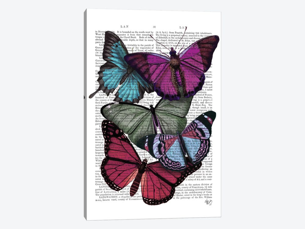 Big Bold Butterflies III by Fab Funky 1-piece Canvas Print