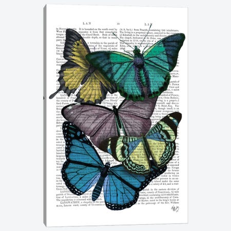 Big Bold Butterflies IV Canvas Print #FNK145} by Fab Funky Canvas Artwork