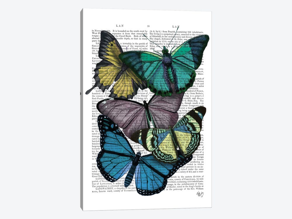 Big Bold Butterflies IV by Fab Funky 1-piece Canvas Art