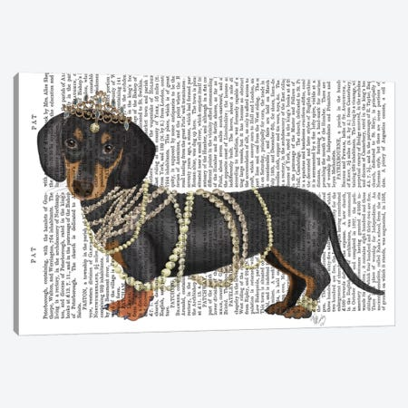 Dachshund and Pearls II Canvas Print #FNK1467} by Fab Funky Canvas Artwork