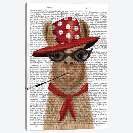 Fabulous Llama Canvas Print #FNK1474} by Fab Funky Canvas Art Print