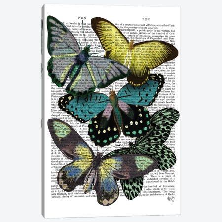 Big Bold Butterflies VI Canvas Print #FNK147} by Fab Funky Canvas Art