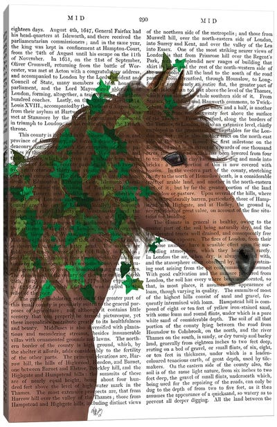 Horse Chestnut with Ivy II Canvas Art Print
