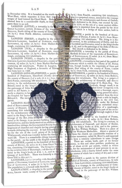 Ostrich and Pearls, Full II Canvas Art Print