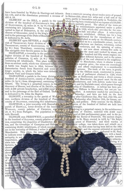 Ostrich and Pearls, Portrait II Canvas Art Print