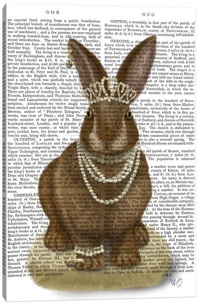 Rabbit and Pearls, Full II Canvas Art Print